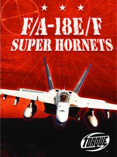 FA18EF Super Hornets