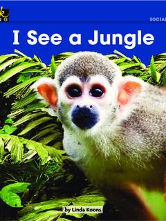I See a Jungle
