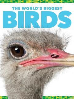 The World's Biggest Birds