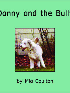 Danny and the Bully