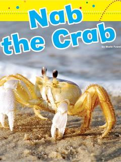 Nab the Crab