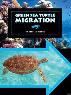 Green Sea Turtle Migration