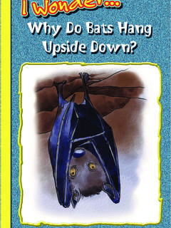 Why Do Bats Hang Upside Down?