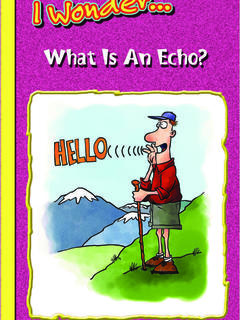 What is an Echo?