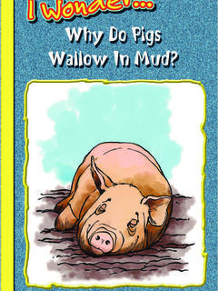 Why Do Pigs Wallow in Mud?