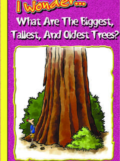 What are the Biggest, Tallest, and Oldest Trees?