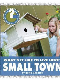 What's It Like to Live Here? Small Town