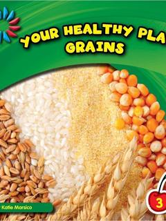 Your Healthy Plate: Grains