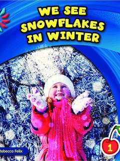 We See Snowflakes in Winter