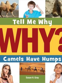 Camels Have Humps