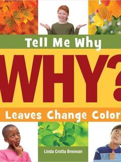 Leaves Change Color