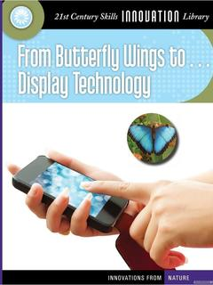 From Butterfly Wings to Display Technology
