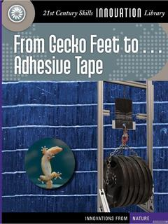 From Gecko Feet to Adhesive Tape