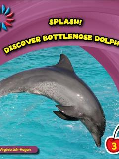 Discover Bottlenose Dolphins