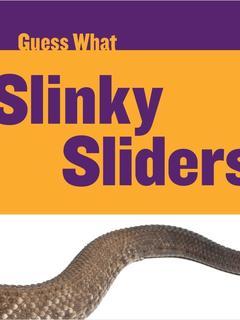 Slinky Sliders